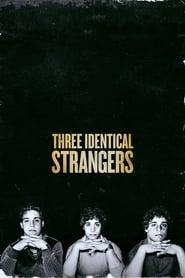 Three Identical Strangers streaming vf