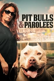 Pit Bulls and Parolees streaming vf