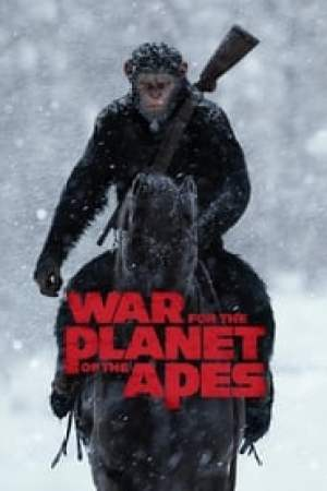 War for the Planet of the Apes 2017 Online Subtitrat