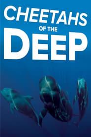 Cheetahs of the Deep Full online