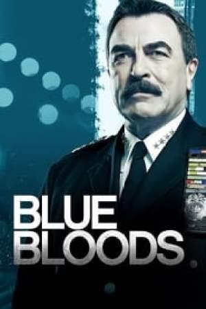 Blue Bloods 2010 Online Subtitrat