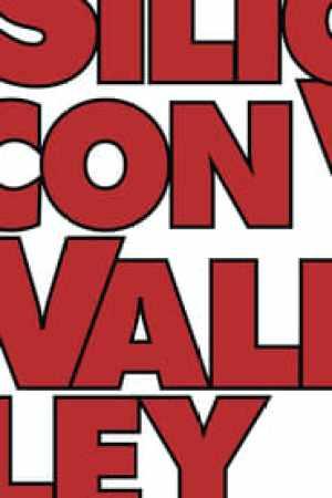 Silicon Valley 2014 Online Subtitrat