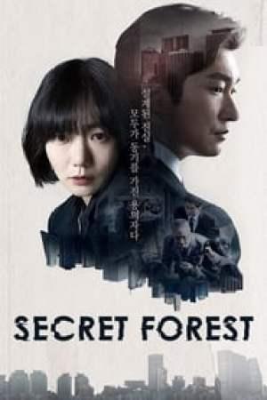 Secret Forest 2017 Online Subtitrat