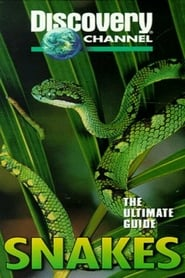 The Ultimate Guide: Snakes Full online