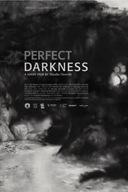 Perfect Darkness Full online