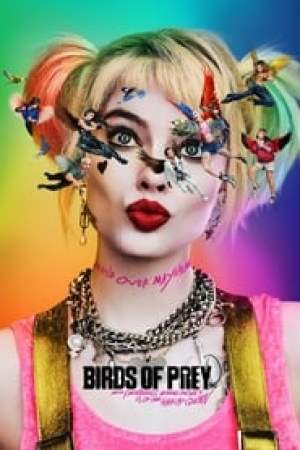 Birds of Prey (and the Fantabulous Emancipation of One Harley Quinn) 2020 Online Subtitrat