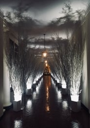 Holiday Decorations at the White House movie full