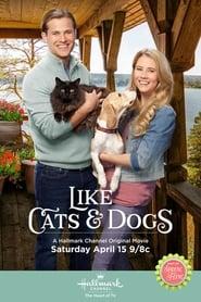 Like Cats & Dogs Full online
