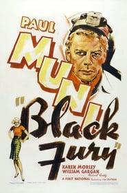 Black Fury Full online