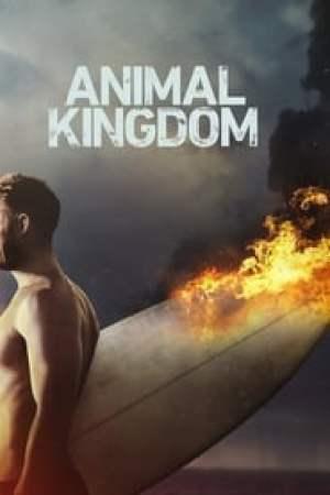 Animal Kingdom 2016 Online Subtitrat
