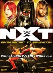 NXT: From Secret to Sensation Full online