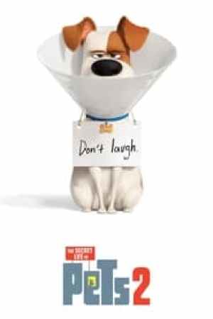The Secret Life of Pets 2 2019 Online Subtitrat