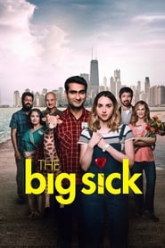 The Big Sick streaming vf