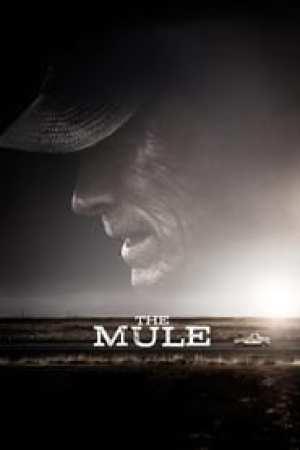 The Mule 2018 Online Subtitrat