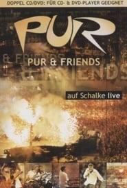 PUR & Friends auf Schalke live Full online