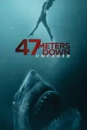 47 Meters Down: Uncaged 2019 Online Subtitrat