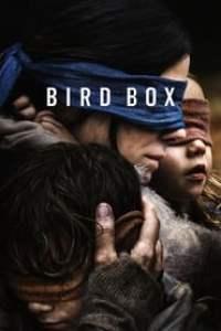 Caixa de Pássaros: Bird Box (2018) Assistir Online
