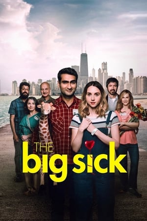 Poster Movie The Big Sick 2017