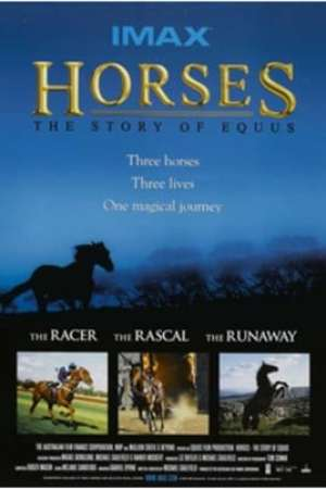 Image Horses: The Story of Equus