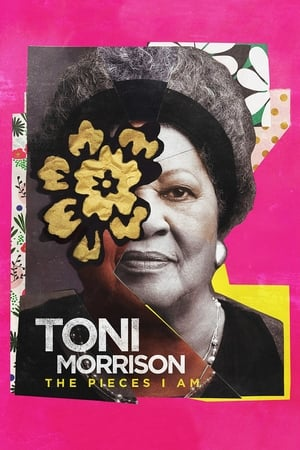 Image Toni Morrison: The Pieces I Am