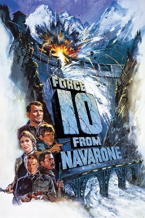Image Force 10 from Navarone