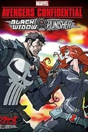 Image Avengers Confidential: Black Widow & Punisher
