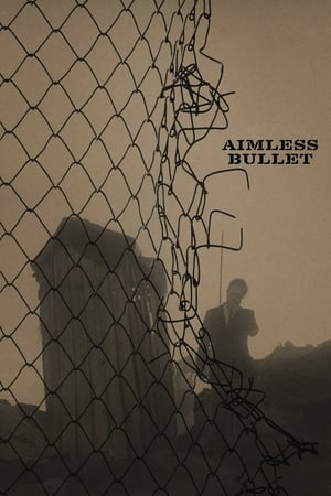Image Aimless Bullet
