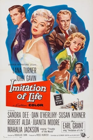 Image Imitation of Life