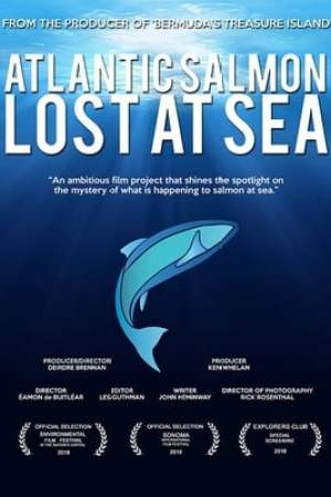 Image Atlantic Salmon: Lost at Sea