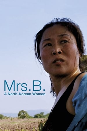 Mrs. B., a North Korean Woman