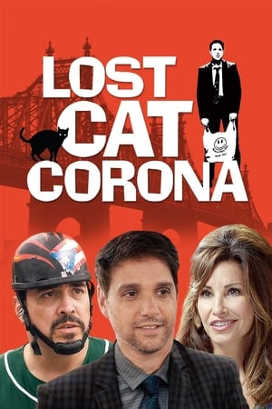 Image Lost Cat Corona