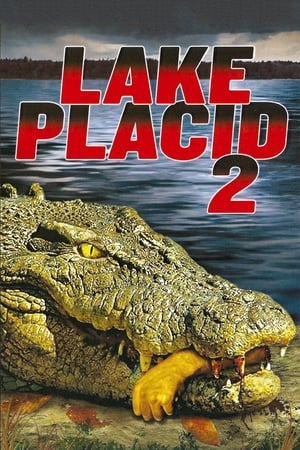 Image Lake Placid 2