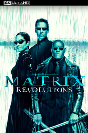 poster Matrix Revolutions