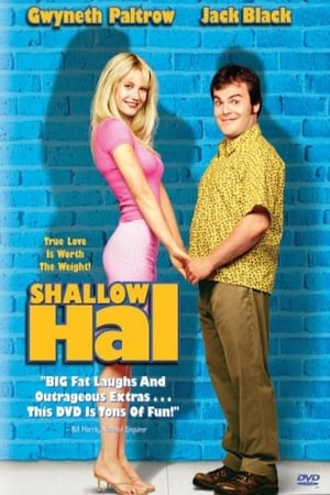 Image Shallow Hal: Seeing Through the Make-up