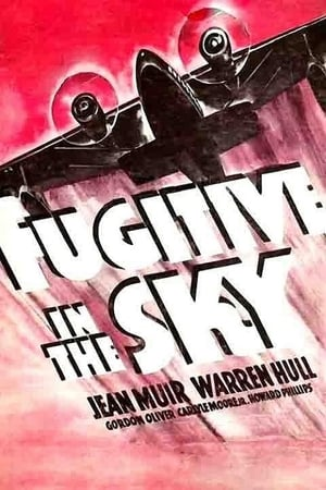 Image Fugitive in the Sky