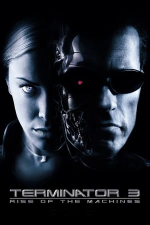 Image Terminator 3: Rise of the Machines
