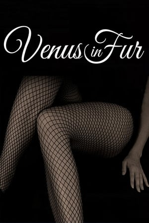 Image Venus in Fur