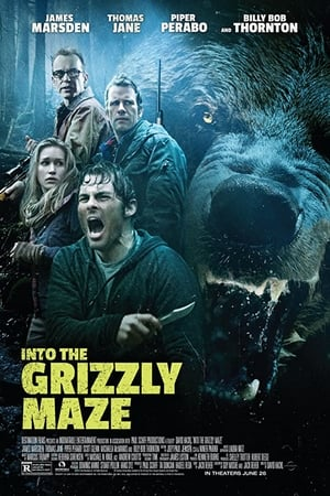 Image Into the Grizzly Maze