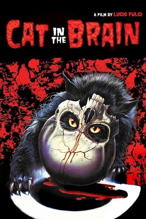 Image A Cat in the Brain