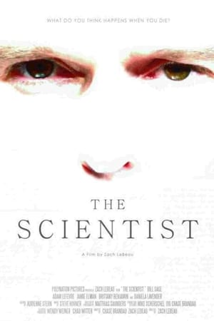 Image The Scientist