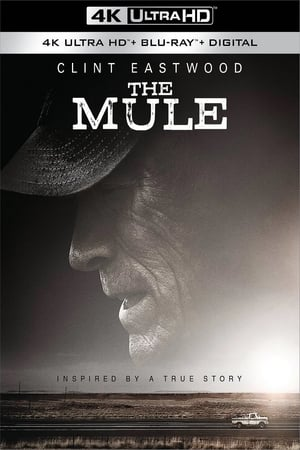 Image The Mule