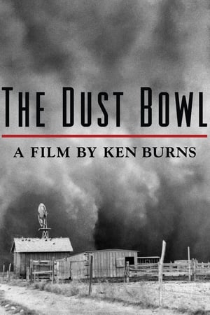 Image The Dust Bowl
