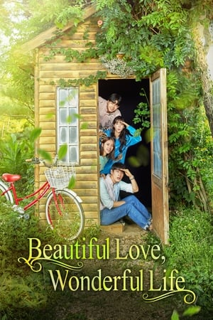 poster Beautiful Love, Wonderful Life