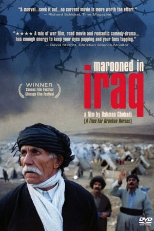 Image Marooned in Iraq