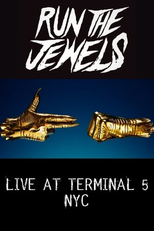 Run The Jewels - LIVE AT TERMINAL 5 NYC