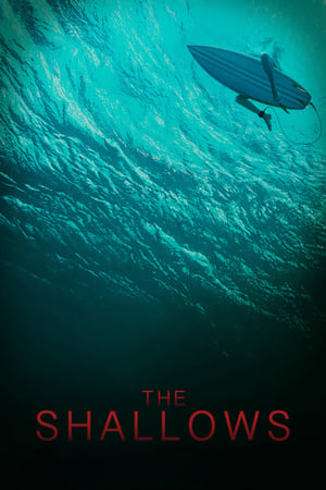 Image The Shallows