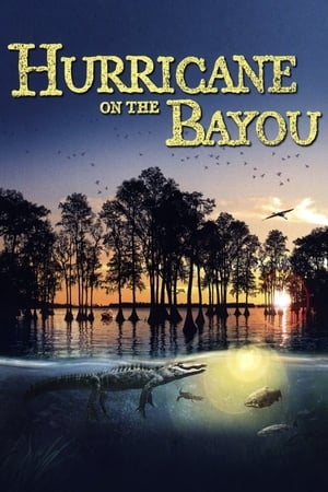Image Hurricane on the Bayou