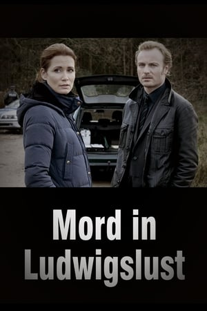 Image Mord in Ludwigslust