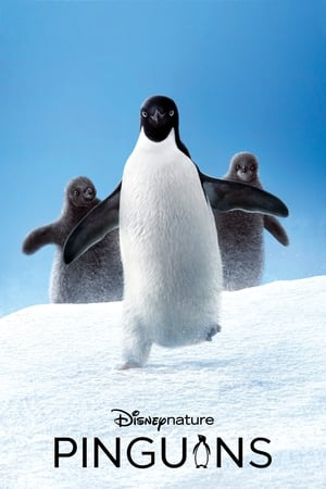 Image Penguins