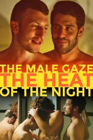 Image The Male Gaze: The Heat of the Night